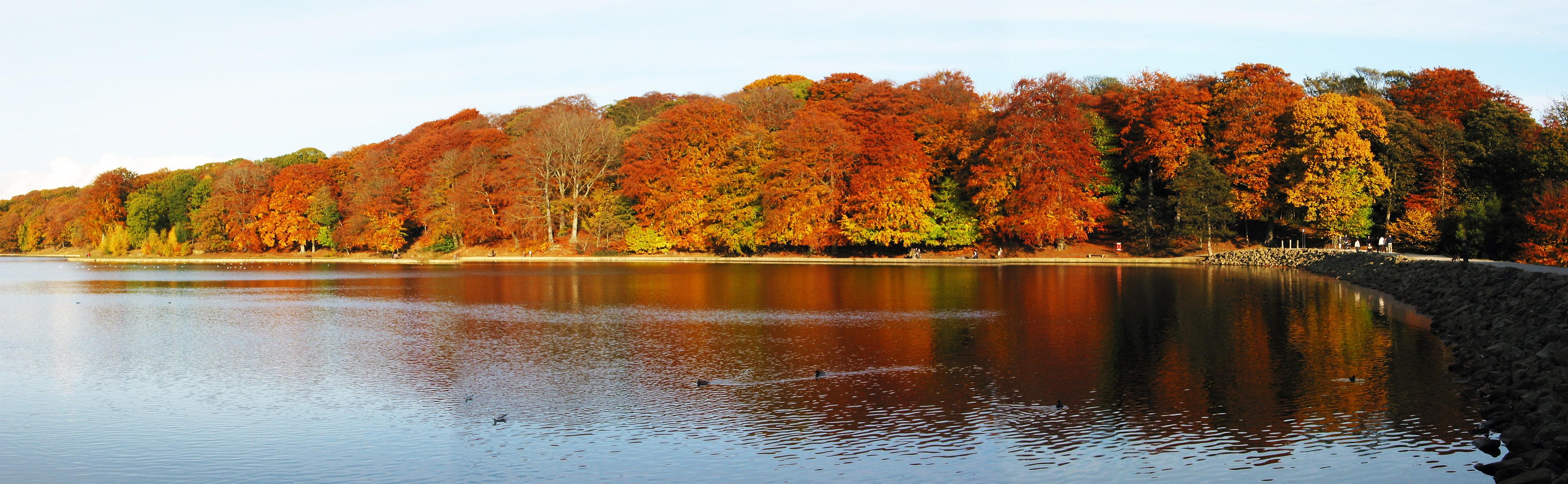 Slikovni rezultat za fall  panorama